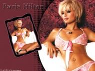 Paris Hilton / Celebrities Female
