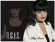 Download NCIS / Pauley Perrette
