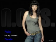 Download ncis, abby sciuto, abby, lab, gibbs, ziva david, tony, mcgee, navy, naval / Pauley Perrette