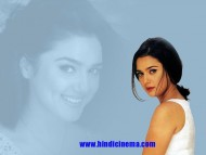 Preity Zinta / Celebrities Female