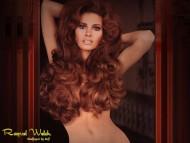 Download Raquel Welch / Celebrities Female