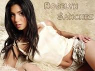 Roselyn Sanchez / Celebrities Female