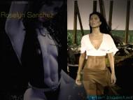 Download Roselyn Sanchez / Celebrities Female