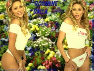 Roxanne Galla / Celebrities Female