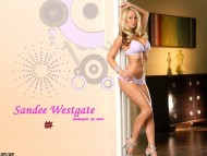 Sandee Westgate / Celebrities Female