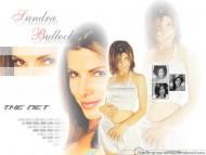 High quality Sandra Bullock  / Celebrities Female