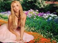 Shakira / Celebrities Female