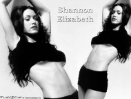 Shannon Elizabeth / Celebrities Female