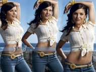 HQ Sophia Bush  / Celebrities Female