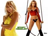 Stacy Keibler / Celebrities Female