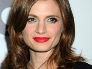 Stana Katic / Celebrities Female