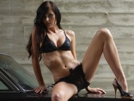 Download Tereza / Celebrities Female