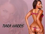 tiara, vixen / Tiara Harris