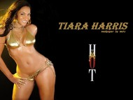 Tiara Harris / Celebrities Female