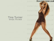 Tina Turner / Celebrities Female