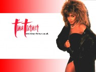 Download Tina Turner / Celebrities Female