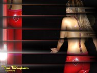 Download Traci Bingham / Celebrities Female