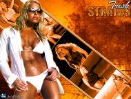 Trish Stratus / Celebrities Female