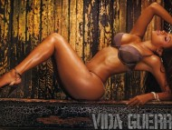 Vida Guerra / High quality Celebrities Female