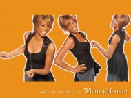Whitney Houston / Celebrities Female