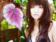 Leaf / Yuriko Shiratori