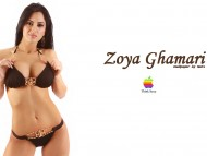 Zoya Ghamari / Celebrities Female