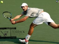 Andy Roddick / Celebrities Male