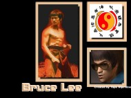 Bruce Lee / Celebrities Male