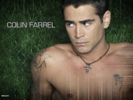 Colin Farrell / Celebrities Male
