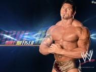 Dave Batista / Celebrities Male