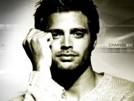 David Charvet / Celebrities Male