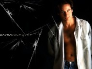 David Duchovny / Celebrities Male