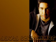 David Schwimmer / Celebrities Male