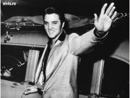 Elvis Presley / Celebrities Male