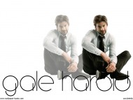 Gale Harold / Celebrities Male