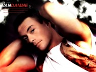 Jean Claude Van Damme / Celebrities Male