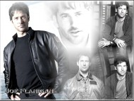 Joe Flanigan / Celebrities Male