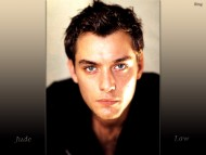 Jude Law / Celebrities Male