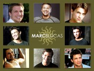 Marc Blucas / Celebrities Male