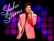 Shakin Stevens / Celebrities Male