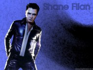 Shane Filan / Celebrities Male