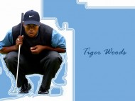 Tiger Woods / Celebrities Male