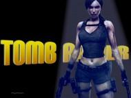 tomb raider, x box, gamer / Lara Croft