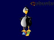 Linux / Computer