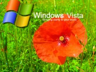 Windows Vista / Computer