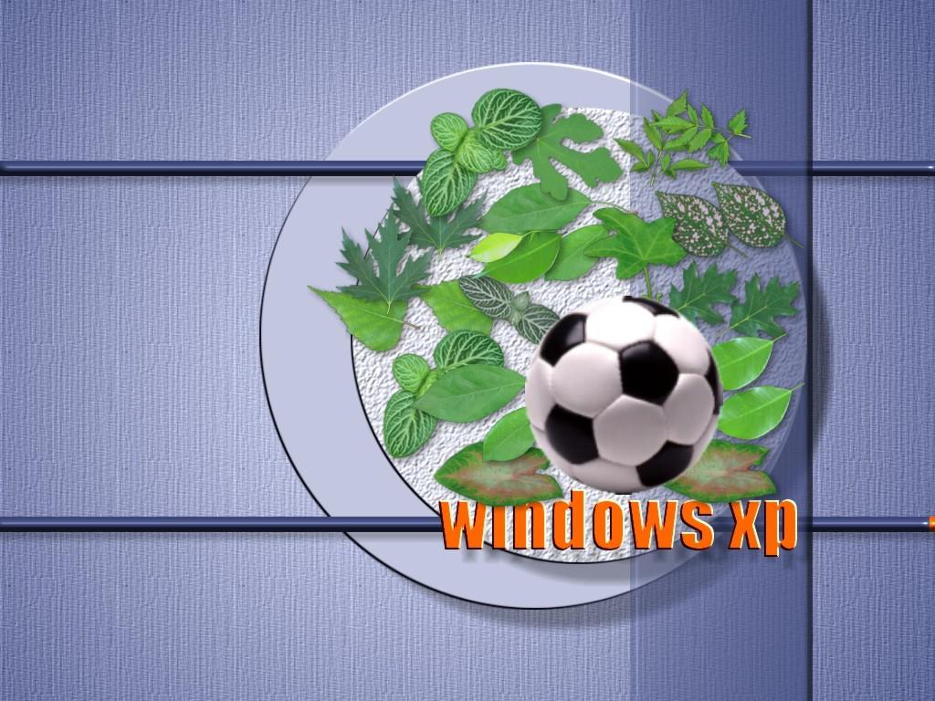 Download Xp / Computer wallpaper / 1024x768
