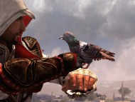 Carrier Pigeon / Assassins Creed