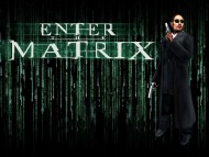 Enter the Matrix / Games