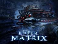 Enter the Matrix / Games