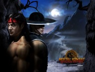 Mortal Kombat / High quality Games
